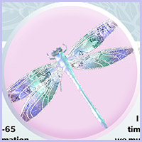 Meaning of the Dragonfly
